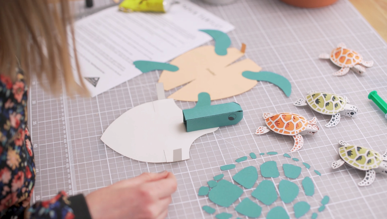 10_Paper_turtle_template_Sam_Pierpoint_Pipthepaperturtle