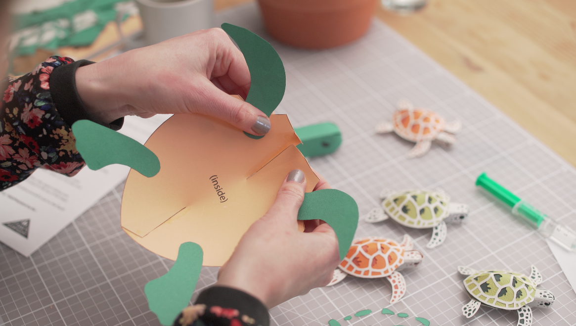 14_Paper_turtle_template_Sam_Pierpoint_Pipthepaperturtle
